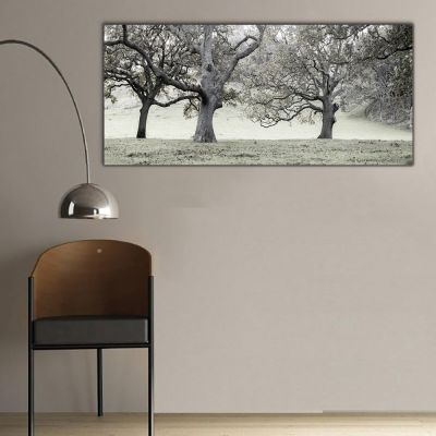 Siyah Beyaz Ağaçlar Panoramik Kanvas Tablo